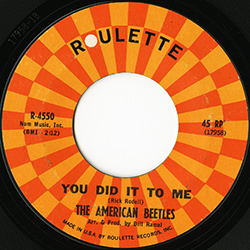 YOU DID IT TO ME / THE AMERICAN BEETLES