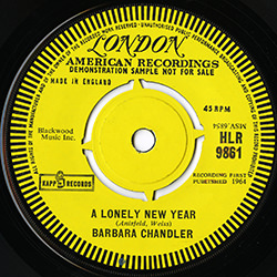 A LONELY NEW YEAR / BARBARA CHANDLER