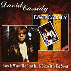 DAVID CASSIDY Home Is Where The Heart Is