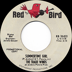 SUMMERTIME GIRL THE TRADE WINDS