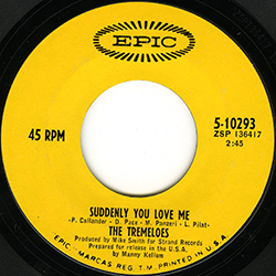 SUDDENLY YOU LOVE ME THE TREMELOES